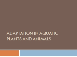 ADAPTATION IN terrestrial PLANTS AND ANIMALS