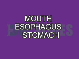 MOUTH ESOPHAGUS  STOMACH