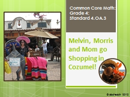 Melvin, Morris and Mom go Shopping in Cozumel!