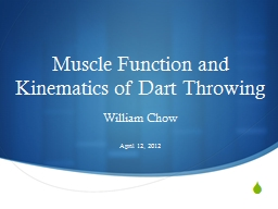 Muscle Function and Kinematics of Dart Throwing