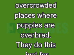 Puppy Mills are overcrowded places where puppies are overbred. They do this just for