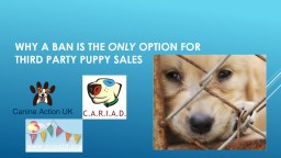 Why a ban is the  ONLY  option for third party puppy sales