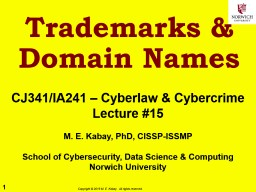 Trademarks & Domain Names PowerPoint PPT Presentation