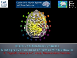Brain Coordination Dynamics PowerPoint Presentation, PPT - DocSlides