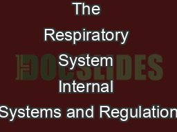 The Respiratory System Internal Systems and Regulation