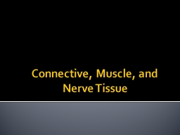Connective, Muscle, and Nerve Tissue