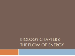 Biology Chapter 6 The Flow of Energy