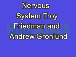 Nervous  System Troy Friedman and Andrew Gronlund