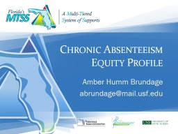 Chronic Absenteeism Equity Profile