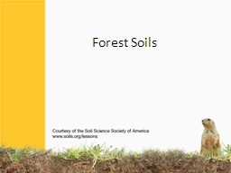 Forest Soils Forests used to cover the Eastern half of the United States, and most of southern Cana
