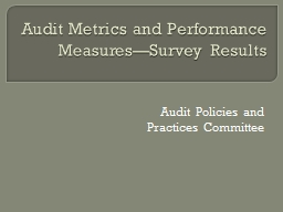 Audit Metrics and Performance Measures—Survey Results