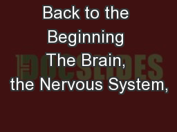 Back to the Beginning The Brain, the Nervous System,