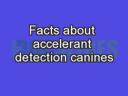 Facts about accelerant detection canines