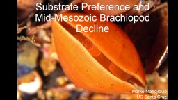 Substrate Preference and Mid-Mesozoic Brachiopod Decline