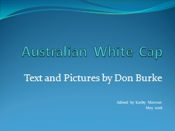 Australian White Cap Text and Pictures by Don Burke
