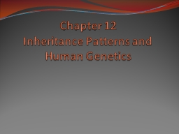 Chapter 12 Inheritance Patterns and