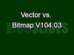 Vector vs. Bitmap V104.03