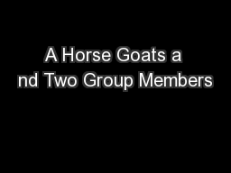 A Horse Goats a nd Two Group Members