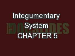 Integumentary System CHAPTER 5