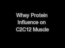Whey Protein Influence on C2C12 Muscle