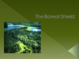 The Boreal Shield Glossary Terms!