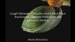 The Role of Substrate Preference in Mid-Mesozoic Brachiopod Decline