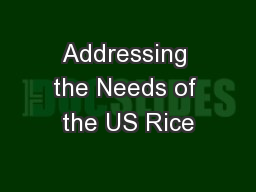 Addressing the Needs of the US Rice