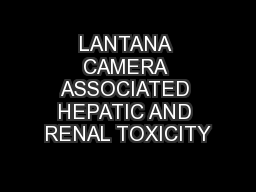 LANTANA CAMERA ASSOCIATED HEPATIC AND RENAL TOXICITY