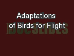Adaptations of Birds for Flight
