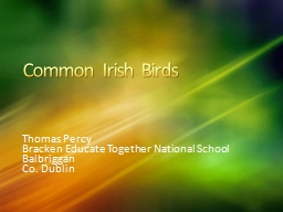 Common Irish Birds Thomas Percy