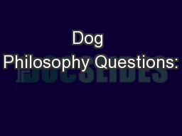 Dog Philosophy Questions:
