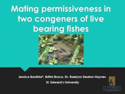 Mating permissiveness in two congeners of live bearing fishes