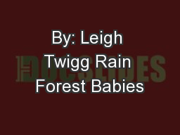 By: Leigh Twigg Rain Forest Babies