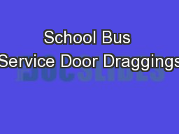 School Bus Service Door Draggings