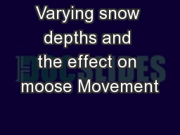 Varying snow depths and the effect on moose Movement