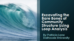 Excavating the Bare Bones of Community Structure Using Loop Analysis
