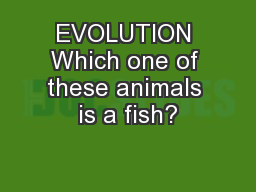 EVOLUTION Which one of these animals is a fish?