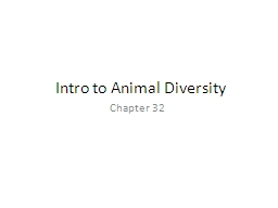 Intro to Animal Diversity PowerPoint PPT Presentation