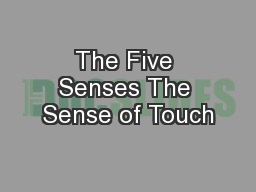 The Five Senses The Sense of Touch