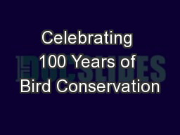Celebrating 100 Years of Bird Conservation