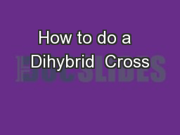How to do a  Dihybrid  Cross