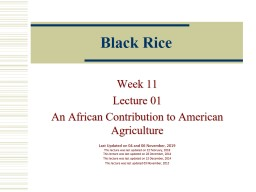 Black Rice Week 11 Lecture 01