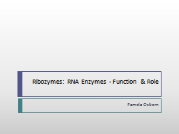Ribozymes: RNA Enzymes - Function & Role