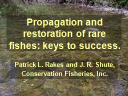 Propagation and restoration of rare fishes: keys to success.