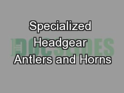 Specialized Headgear Antlers and Horns
