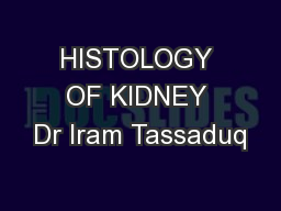 HISTOLOGY OF KIDNEY Dr Iram Tassaduq