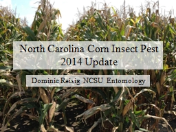 North Carolina Corn Insect Pest
