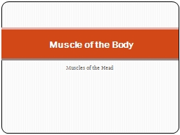 Muscles of the Head Muscle of the Body