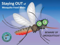 Staying OUT   of Mosquito Food Webs