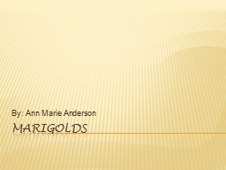 Marigolds By: Ann Marie Anderson PowerPoint PPT Presentation